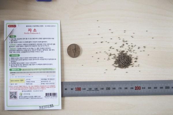 seed-03