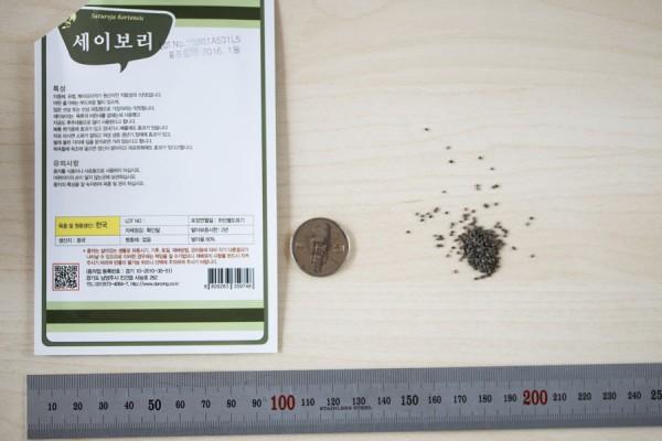 seed-04