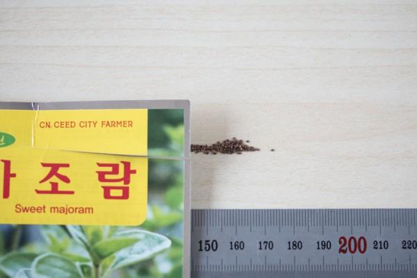 seed-08
