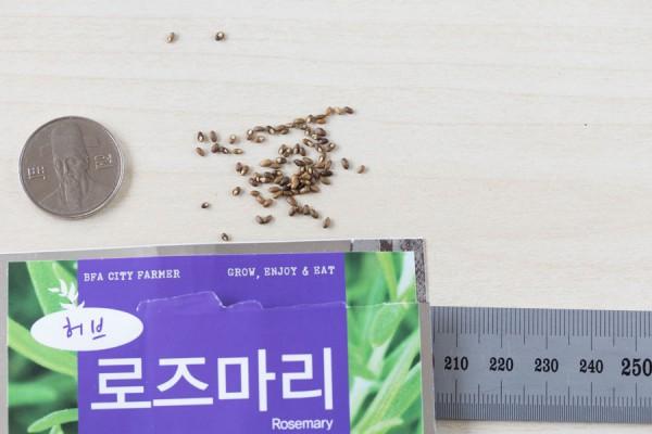 seed-14