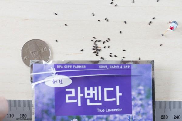 seed-16