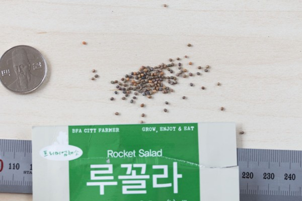 seed-17