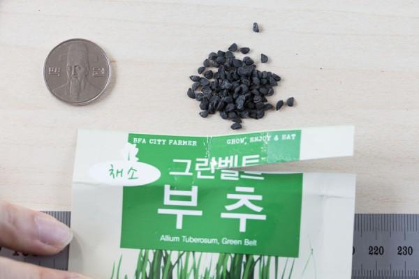 seed-20