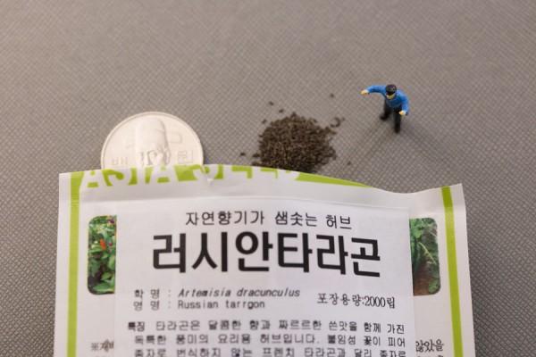 seed-23